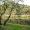Image for 133 Gwynned Wynd