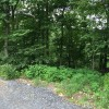 Image for 2150 Renovo Road